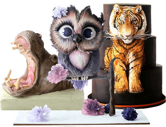 Featured hippo, owl, and tiger cakes